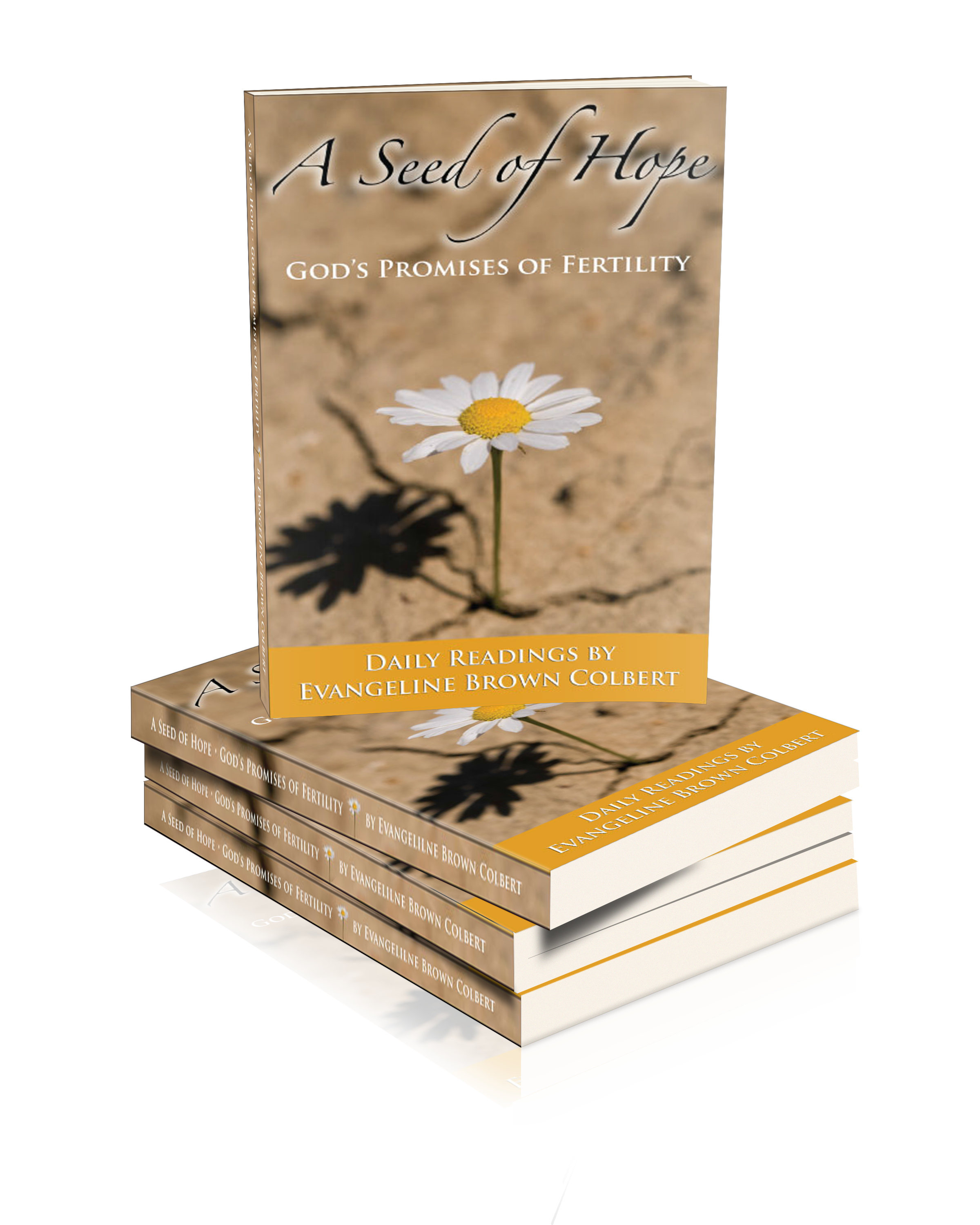 Evangeline's Book---A Seed of Hope: God's Promises of Fertility